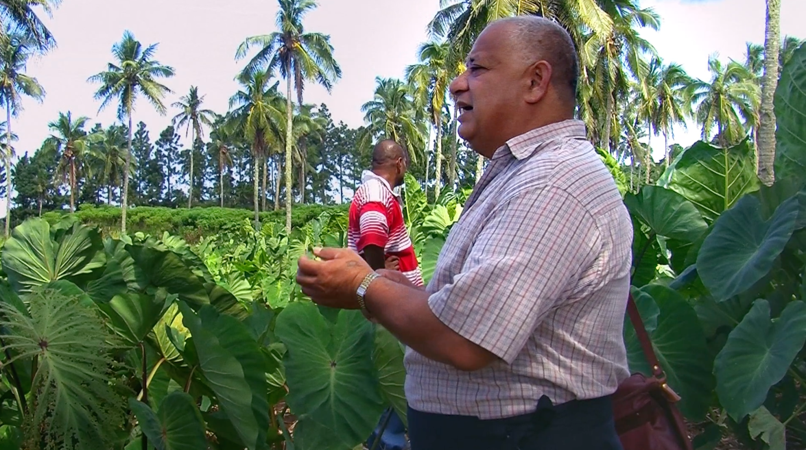 Dr Puloka in the plantation with a patient talking about occupational therapy